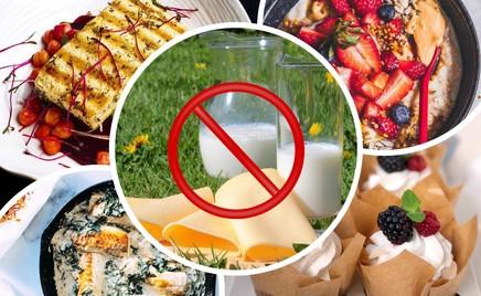 Без лактозы: 10 рецептов для тех, у кого аллергия на белок коровьего молока