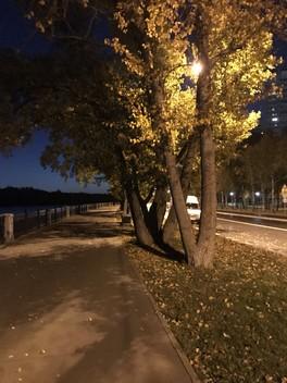 Осень 🍂 Немного обо мне и о семье )