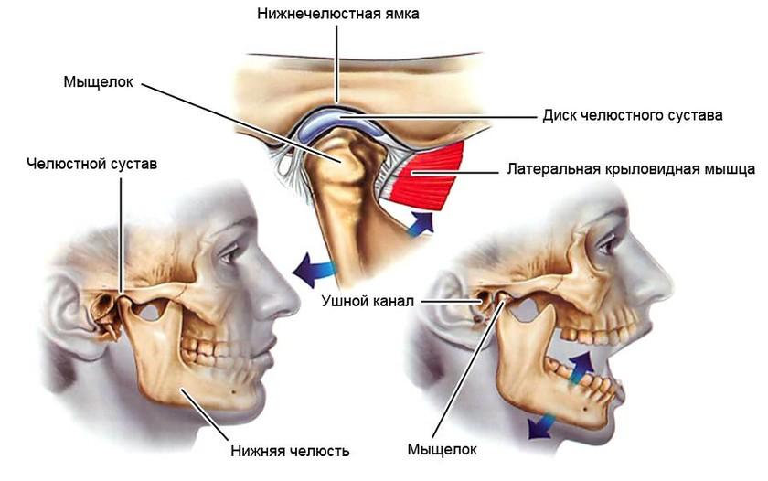 Щелкает сустав челюсти если болит колено и хрустит