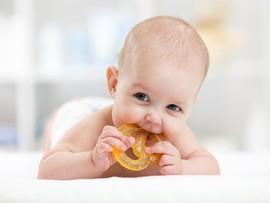 Ребенок кусается: причины и способы решения проблемы