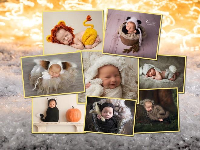 Зайчики, котята и другие зверята: идеи для фотосессии новорожденных