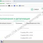 Домрачев Даниил Отчет о собранных средствах за 26.02.2019 - 28.02.2019