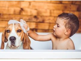 Фото и видео, доказывающие, что собака – лучший друг ребенка