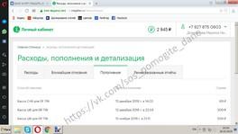 Домрачев Даниил Отчет о собранных средствах за 22.02.2019 - 25.02.2019