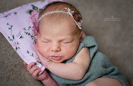 супер-предложение для новорожденных малышей. Брянск