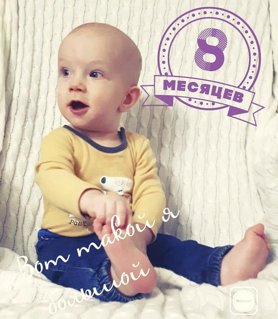 8 месяцев