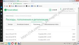 ДОМРАЧЕВ ДАНИИЛ Отчет о собранных средствах за 15.02.2019 - 18.02.2019