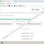 Домрачев Даниил Отчет о собранных средствах за 01.03.2019 - 04.03.2019