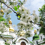 Фотограф на таинство крещения Волгоград\Волжский