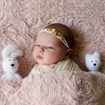 Ищу новорожденную модель. Москва