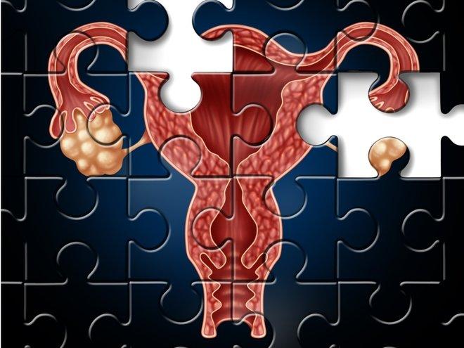 фертильность у женщин